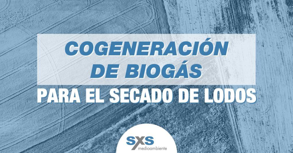 Cogeneración de biogás para el secado de lodos
